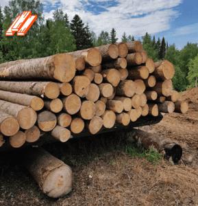 فواید استفاده از چوب وتخته روسی