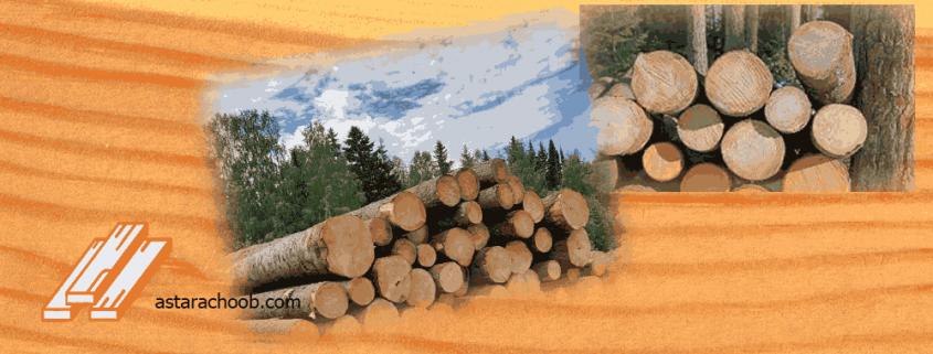 قیمت چوب روسی امروز