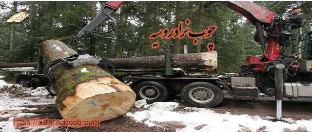 چوب نراد روسیه